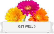 Get Well Soon flower arrangement