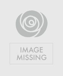 Thomas Kinkade Teapot