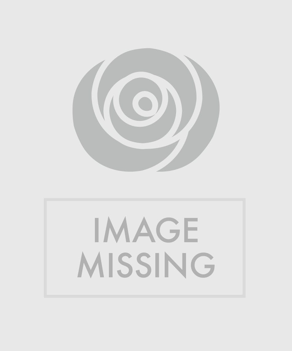 Stunning display of yellow orchids and lilies – accented with river cane, and presented in a rectangular glass vase – that soars to over two feet in height.