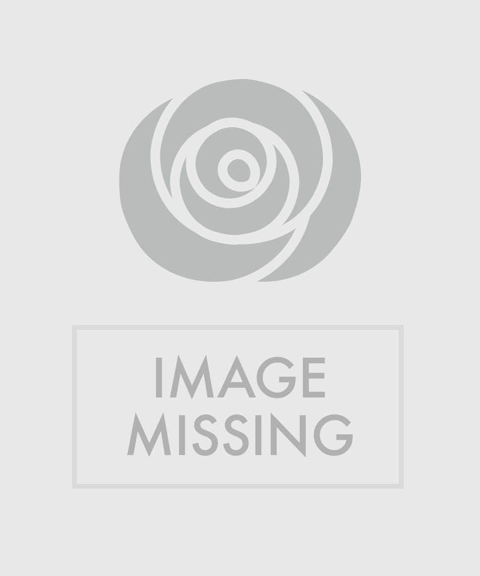 Hydrangea And Lilies Floral Arrangements Mission Viejo Florist