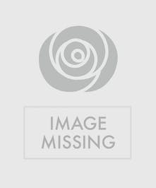 Vase of beautifully colored peonies in a clear glass cube nestled on fresh cut hydrangea blooms.