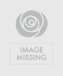"""""""Vase filled of fresh cut daisies"""""""