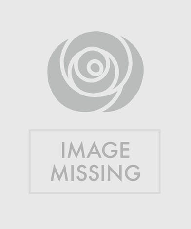 This stunning arrangement of roses and tulips will take anyone's breath away!