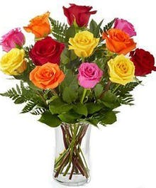 12 Roses in Mixed Colors