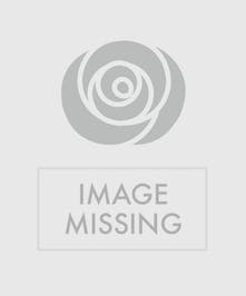 This beautiful bubble bowl arrangement of orange roses is sure to delight!