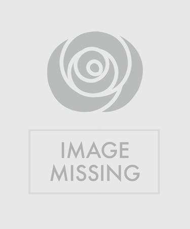 Birthday Flowers Balloon Delivery Mission Viejo CA